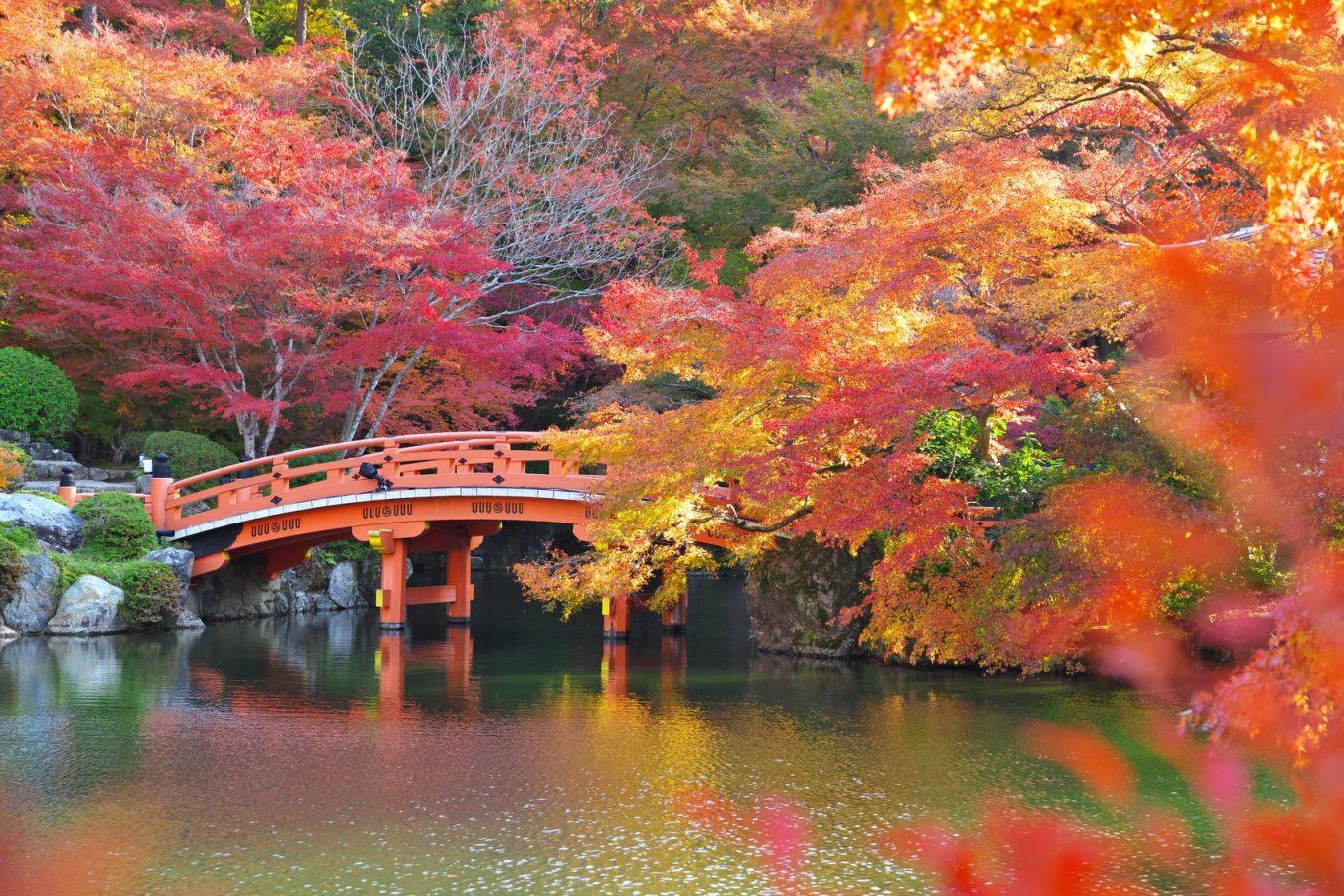 東京から行きたい名水・湧き水スポット